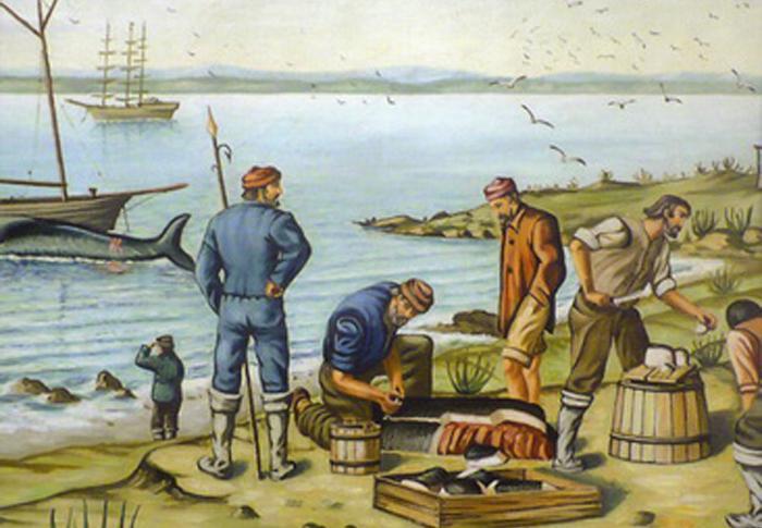 Les Basques à la conquête du Nouveau-Monde